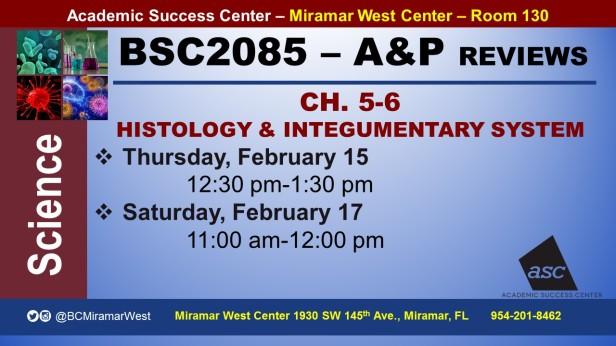 MWC_ BSC2085L_CASTELLANOS_HISTOLOGY&SKIN_ REVIEW BROCHURE___FEB 15-17