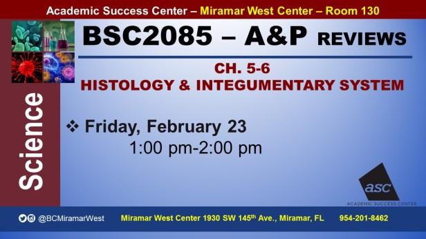 MWC_ BSC2085L_CASTELLANOS_HISTOLOGY&SKIN_ REVIEW BROCHURE___FEB 23