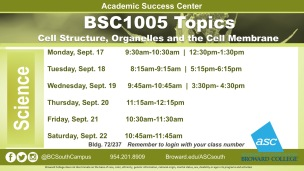17Sep-BSC1005 Fall20191_ W5