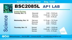 BSC2085L_System Reviews_Nov